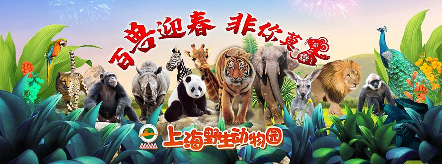 上海野生动物园(非你莫鼠)
