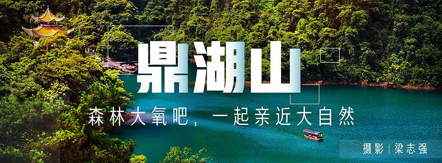 鼎湖山夏季推广