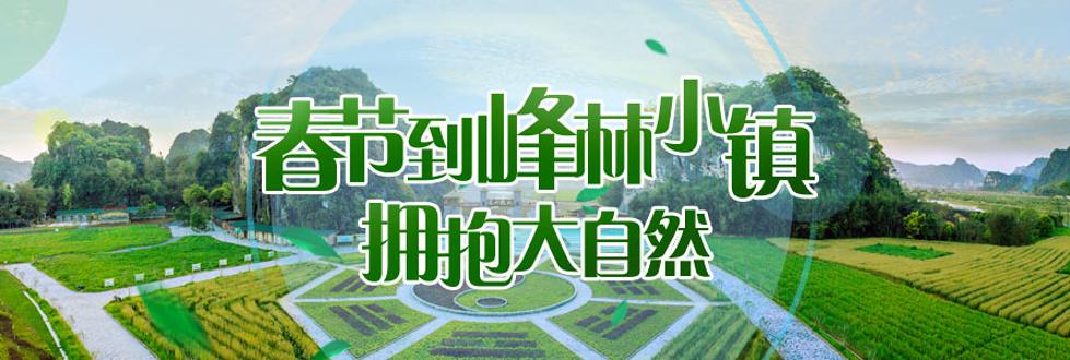 峰林小镇(九龙小镇)春节推广