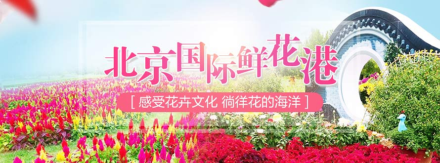 hg0088com皇冠国际鲜花港