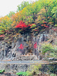 关门山国家森林公园