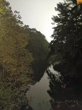 红珠山森林温泉