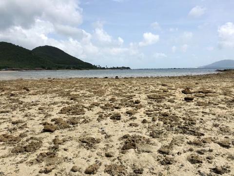 叠山岛旅游景点图片
