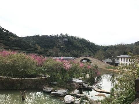 虔心小镇旅游景点攻略图