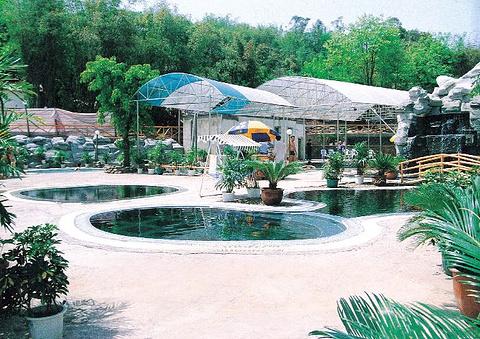 重庆龙温泉的图片