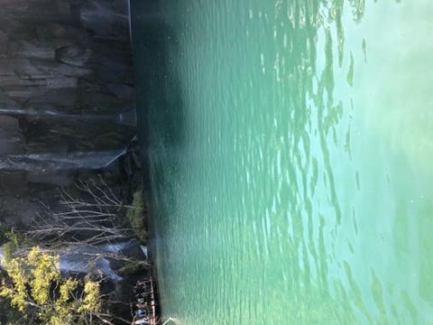 谷底林海旅游景点攻略图