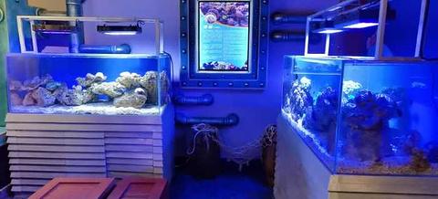 太奥幻太奇海洋馆旅游景点攻略图
