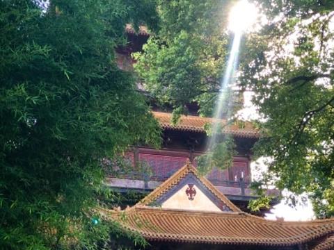 景德镇御窑厂国家考古遗址公园旅游景点图片