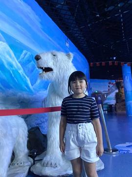 多彩贵州城极地海洋世界旅游景点攻略图